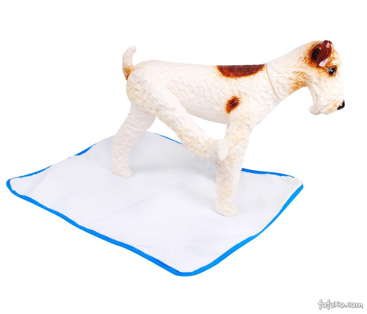 Alternativas para necessidades dos cães