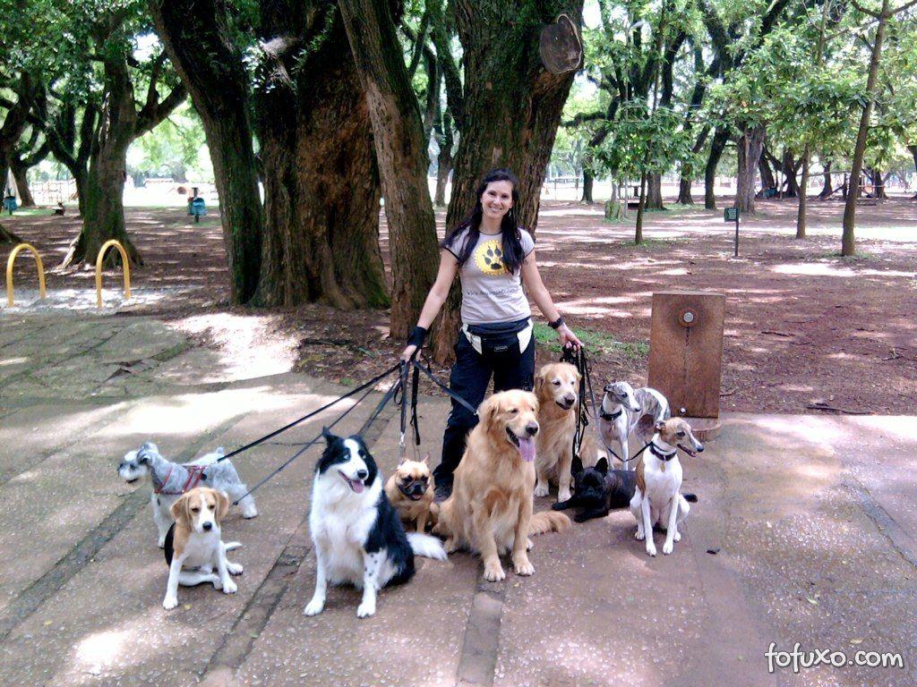 Passeadores de cães