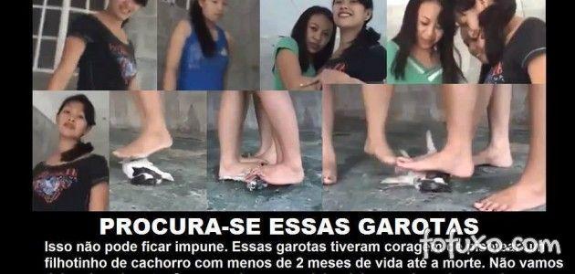 Mais um viral de vídeo com agressões à cachorro toma conta da internet