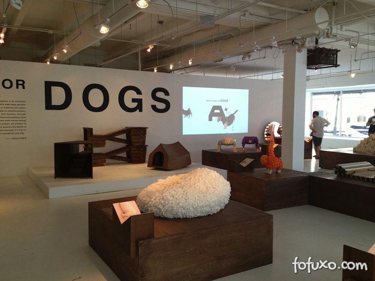 Arquitetos fazem exposição com casas diferentes para cachorros