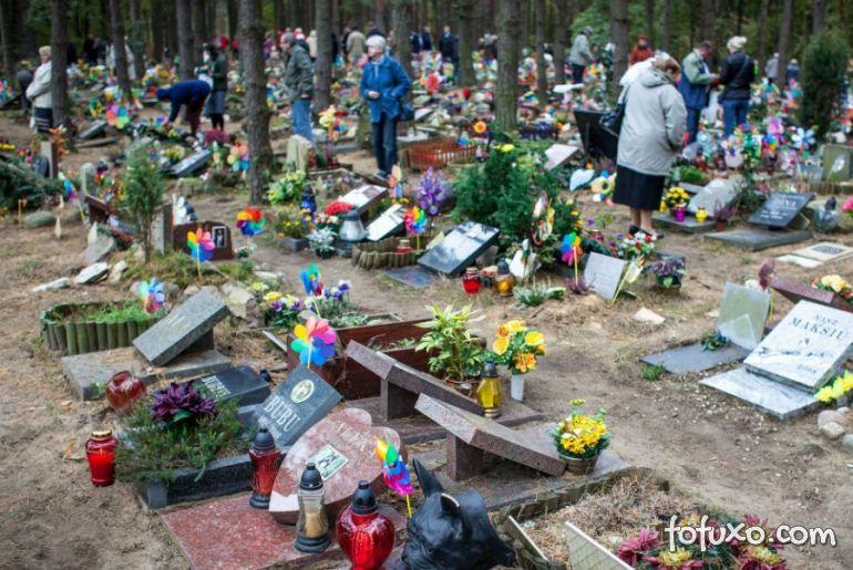 Animais de estimação falecidos também ganham visita no Dia de Finados