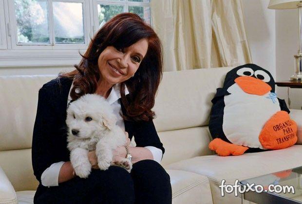 Conheça Simón, o cachorro mais famoso da Argentina