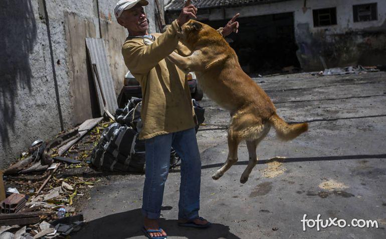 Dicas para evitar que o cachorro pule nas pessoas