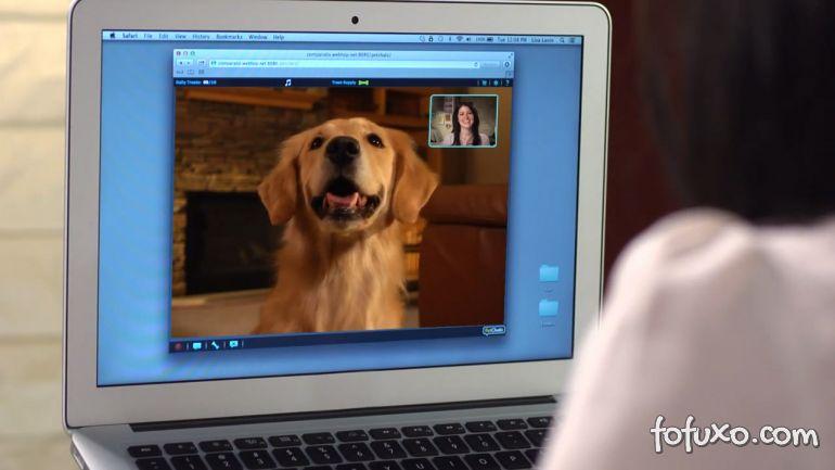 Novo sistema facilita comunicação entre donos e cães à distância
