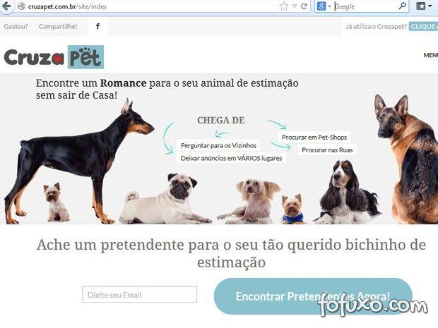 Pets ganham rede social específica para relacionamento
