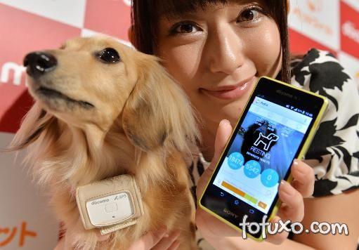 Operadora japonesa lança serviço para monitorar cachorros