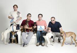 Projetos surgem na web para ajudar causas animais