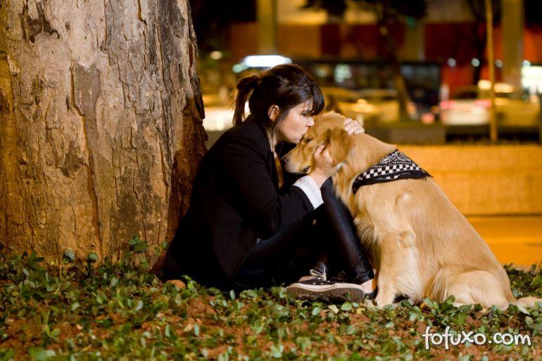 Novos estudos comprovam que cães identificam humor dos humanos