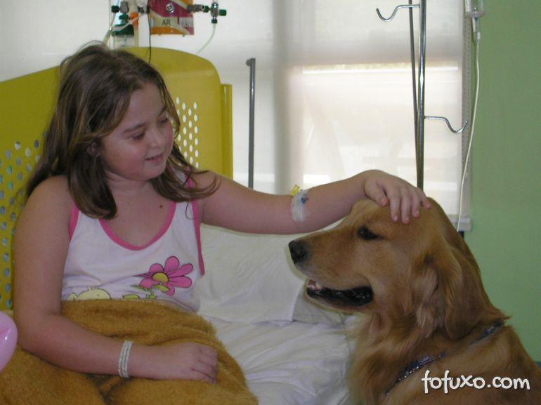 Aumenta o uso da Cãoterapia para crianças