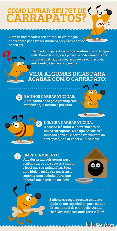 Como livrar seu Pet de carrapatos?