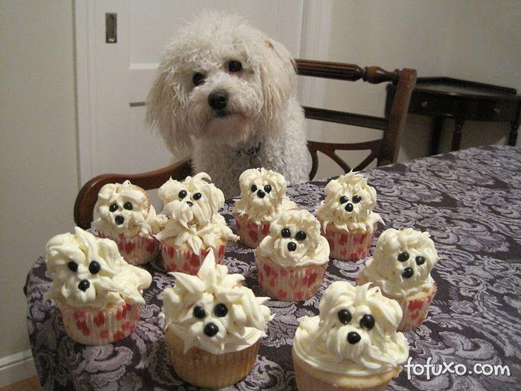Pupcake canino