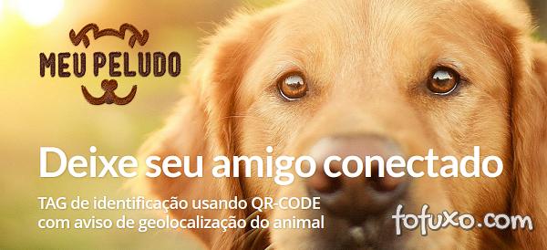 Brasileiros investem em solução para monitoramento de animais