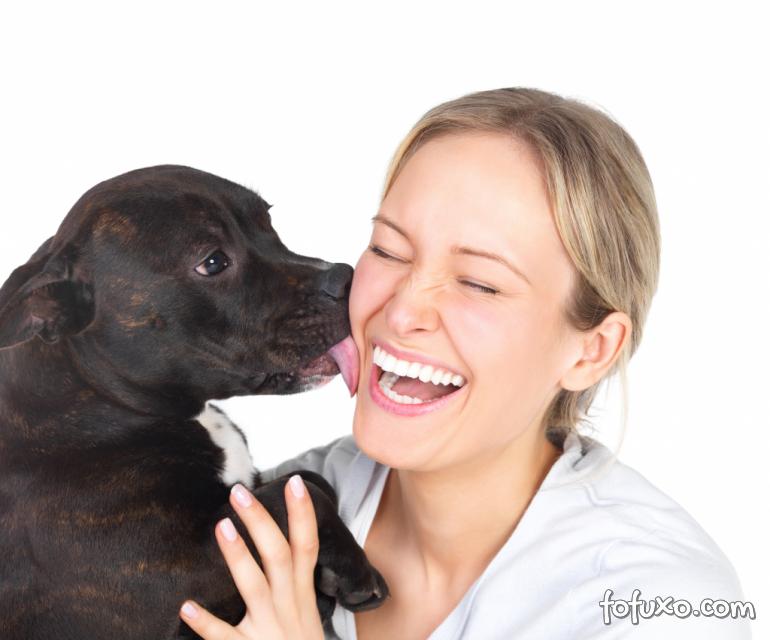 Seu cão realmente te ama