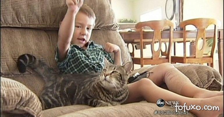 Gata ataca cachorro para salvar criança
