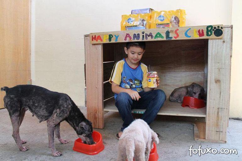 Menino de 8 anos das Filipinas cria abrigo para cachorros abandonados