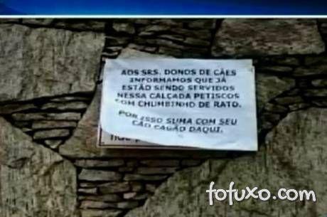 Moradores de Juiz de Fora ameaçam matar cães que fazem cocô na calçada