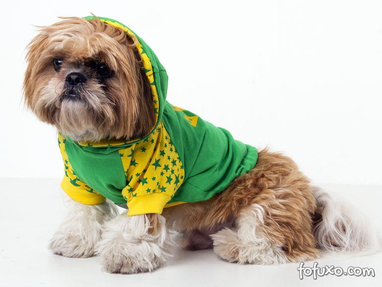 Dicas para proteger os cães dos fogos de artifício da Copa