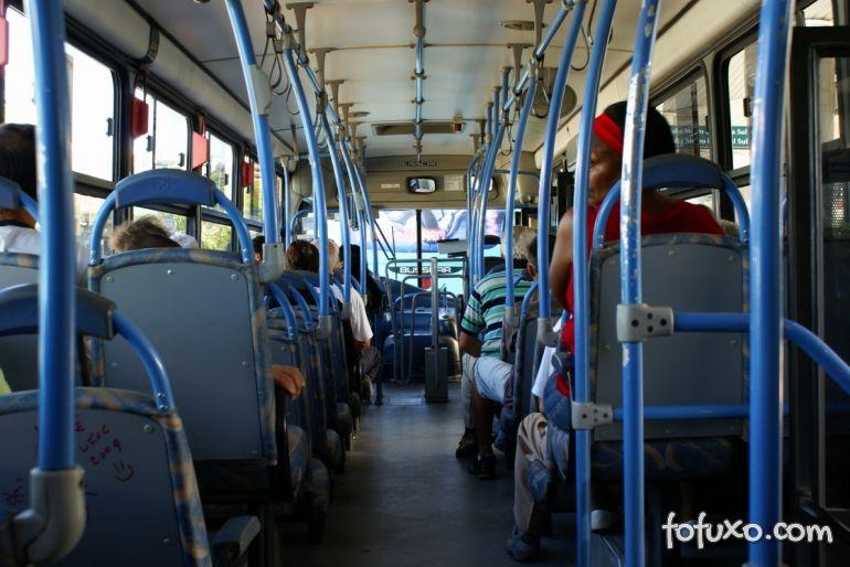 Uberaba poderá aprovar lei para animais em transporte coletivo