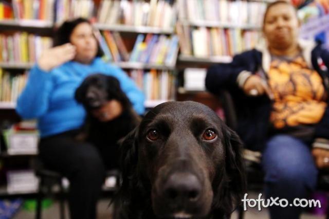 Cães ajudam crianças especiais em escola de Porto Alegre