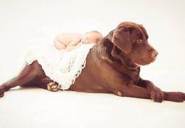 Fotógrafa cria ensaios com bebês e cães