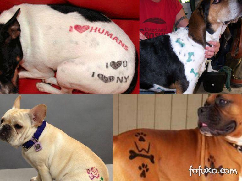Nova York proíbe tatuagens em animais domésticos