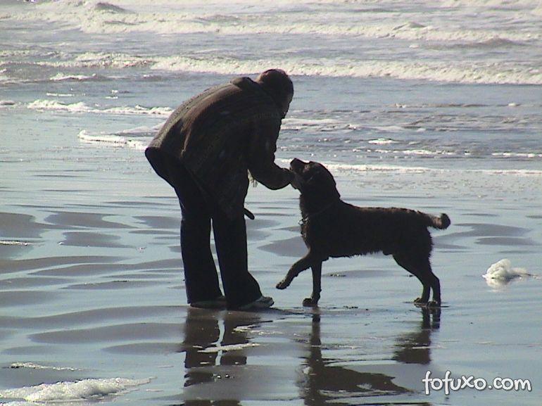 Pesquisa diz que pessoas donas de cães parecem mais jovens