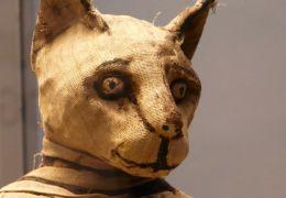 Entenda a importância dos gatos no antigo Egito