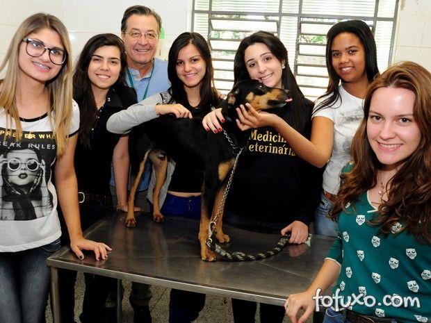 Alunos promovem trote solidário com doação de cães