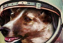 Traje espacial para cães da década de 50 será leiloado