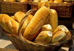 Cachorros podem comer pão?