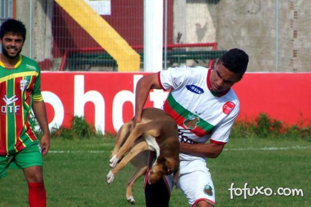 """Jogador é mordido durante partida de futebol e diz que """"cão deu sorte"""""""