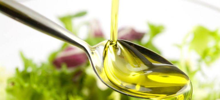 Cães podem comer azeite de oliva?