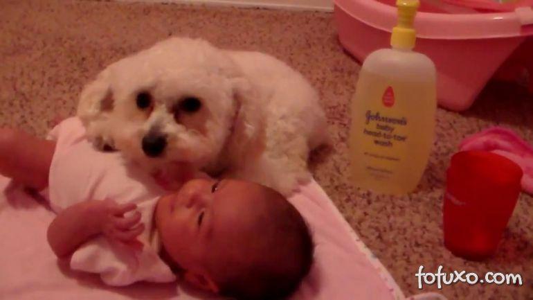 Fofurinha do dia: Cão protege bebê de aspirador de pó