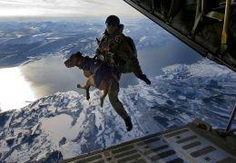 Cachorros saltam de paraquedas na Noruega