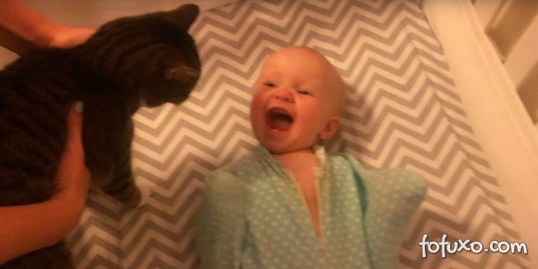 Conheça o bebê que AMA gatos!