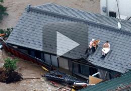 Casal japonês salva cães durante enchente