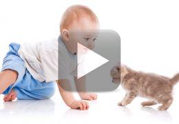 Fofura do dia: Bebê e gato acordando juntos