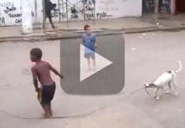Cachorro bate corda para crianças