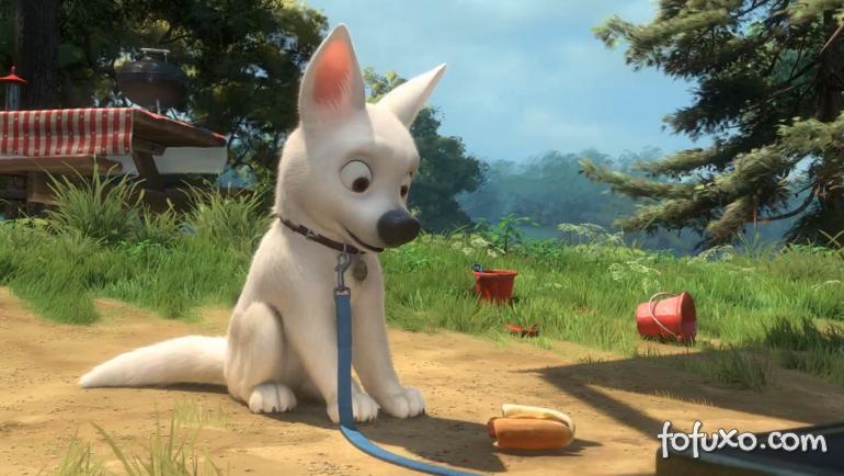 Cachorro fica maluco ao assistir filme do Bolt