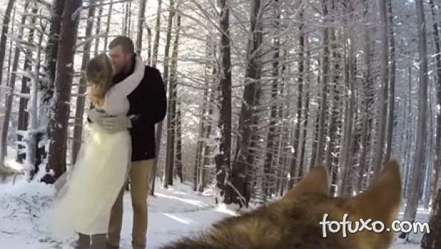 Casal coloca GoPro em cão e pet registra casamento