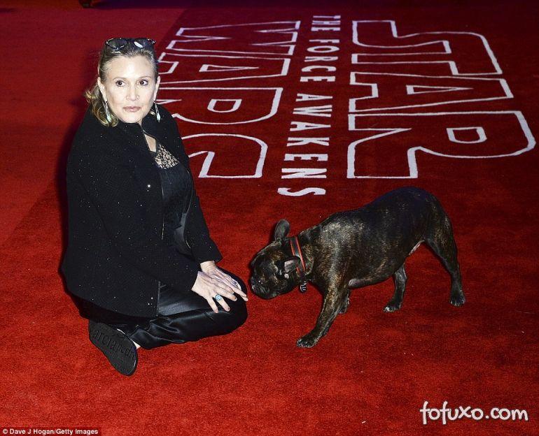 Veja o que o cachorro de Carrie Fische aprontou na pré-estreia do novo Star Wars