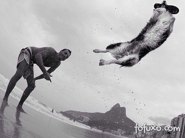 Cachorro faz sucesso jogando bola nas praias do Rio de Janeiro