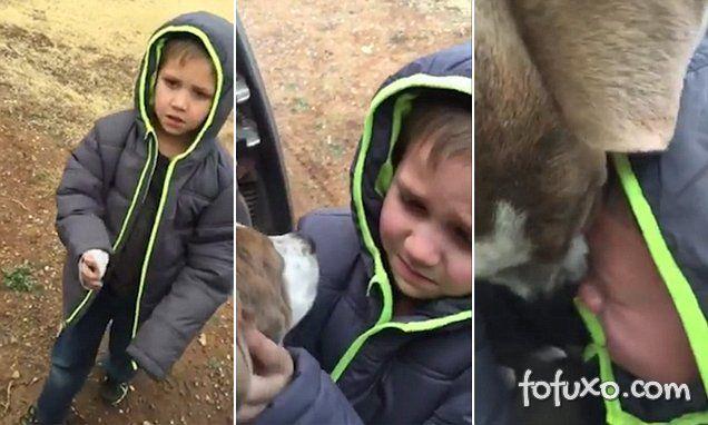 Garoto se emociona ao reencontrar cão perdido