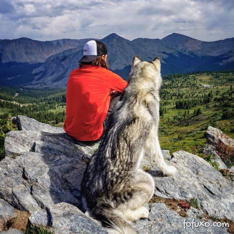 Norte-americano cria vídeo incrível em viagens com o seu cão