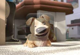 Animação emociona ao mostrar cão deficiente