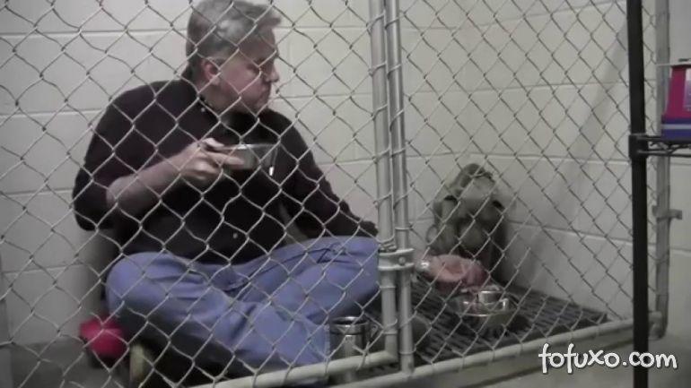 Veterinário come com cão dentro de jaula para conquistar sua confiança