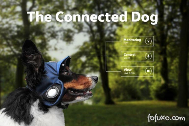 Volkswagen apresenta comercial com cachorro conectado
