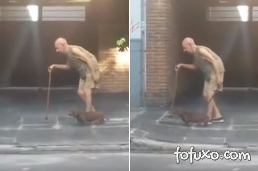 Cachorro caminha devagar para acompanhar idoso