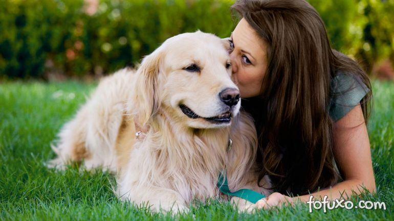 Estudo afirma que os corações do cão e do seu dono batem em sincronia