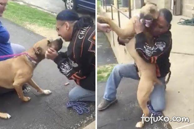 Cachorro reencontra dono depois de dois anos